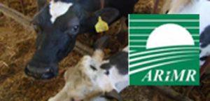 Nadzwyczajna pomoc dla producentów mleka i świń