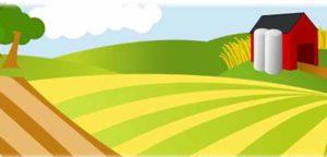 Restrukturyzacja małych gospodarstw