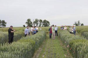Wykorzystanie potencjału nowych odmian roślin uprawnych w rolnictwie zrównoważonym – relacja