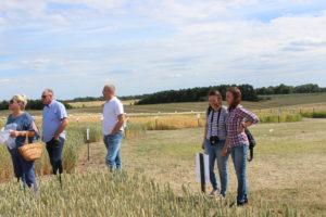 """Konferencja """"Wymagania integrowanej ochrony roślin w odniesieniu do upraw zbóż i rzepaku"""""""