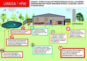 Zasady ochrony gospodarstwa przed wirusem ptasiej grypy (HPAI)