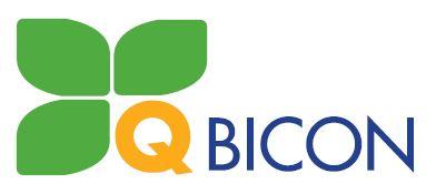 logo_q-bicon