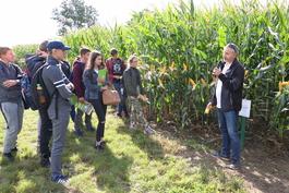 Święto kukurydzy w Grubnie – szkolenie polowe