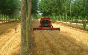 Konferencja – Rolnictwo sprzymierzeńcem bioróżnorodności
